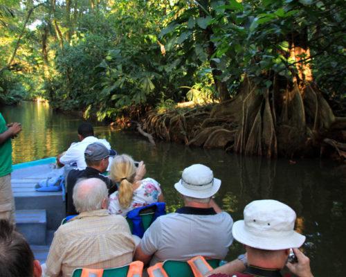 upplevelseresa med flodbåtstur i Turtuguero Costa Rica