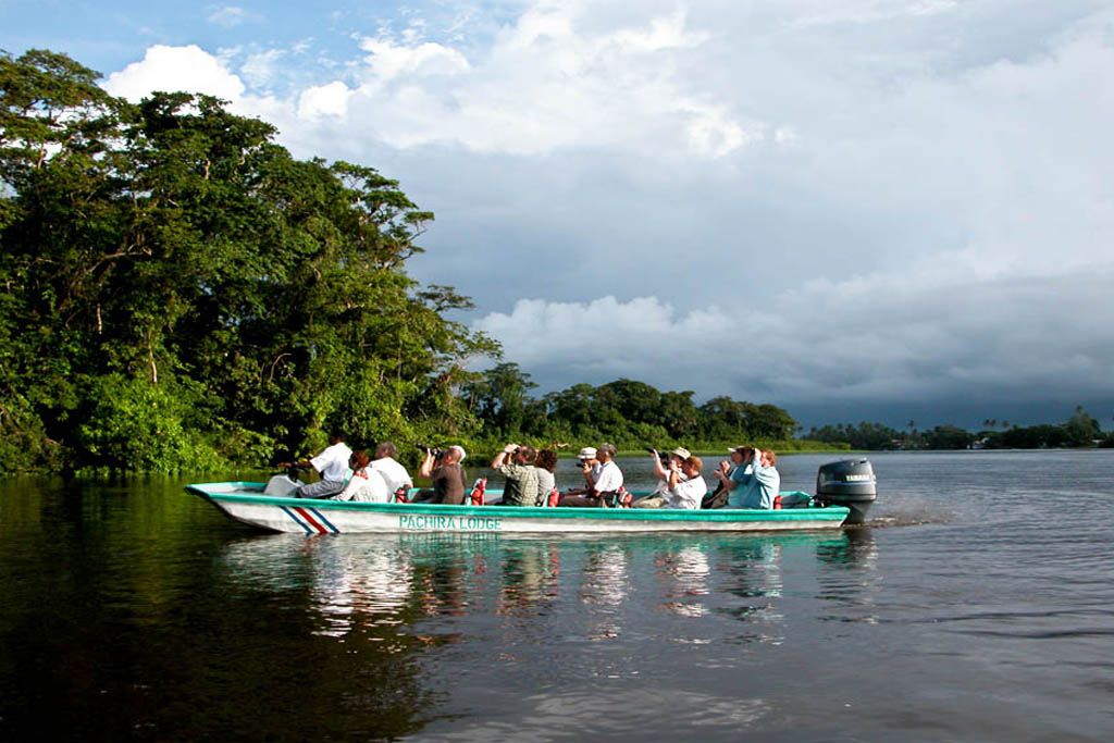 Flodbåts tur Tortuguero