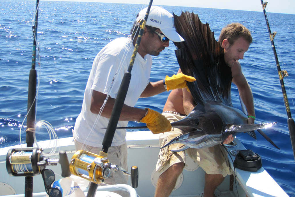 Fiska sailfish Costa Rica