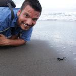 sköldpadds utflykt