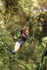 Canopy4