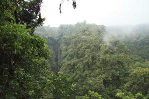 Djungel hike med vattenfall Arenal