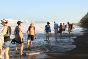 Doppar fötterna i Karibiska havet i Tortugueros nationalpark