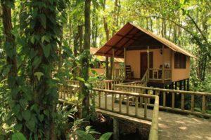 Ewergrean Djungel Lodge Tortuguero