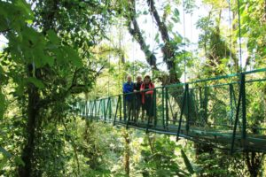 Hängbro Monteverde