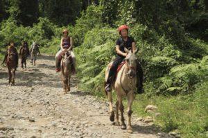 Hästridning till vattenfallet La Fortuna, Arenal