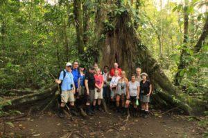 Hike, 1 träd 13 personer