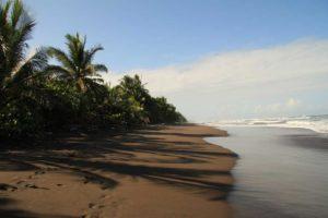 Karibiskahavet Tortuguero Costa Rica