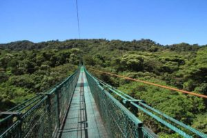 Monteverde molnregnskog hängbro